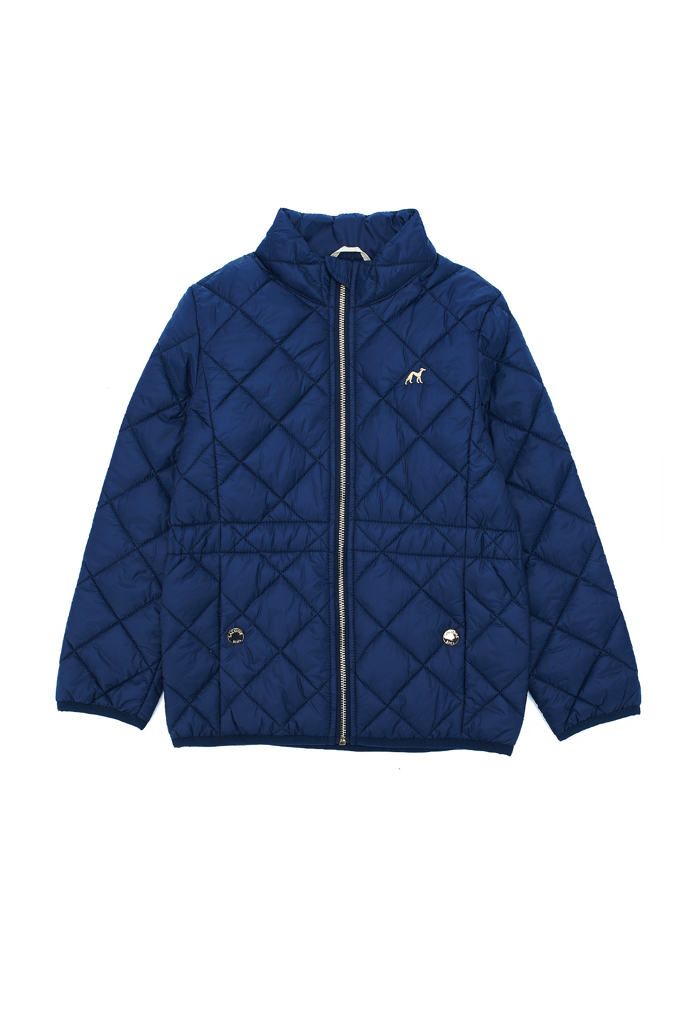 Jacket Dark Blue Casual Girl